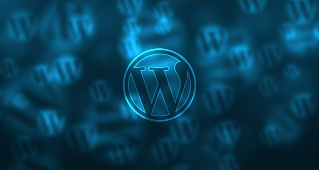 wordpress-581849_640 (1)